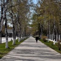 в парке Южно-Сахалинска
