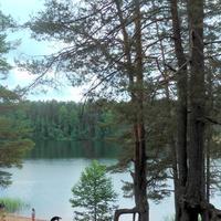 Озеро Омчино северный берег