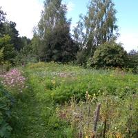 Деревенский огород