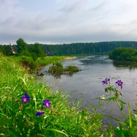 Устье реки Сюзью.