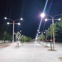 Вечірня алея біля порту