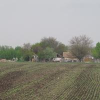 Куроедовка