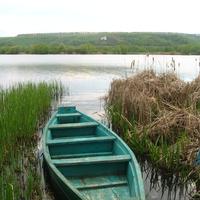 На озере Богатое в Лисках