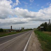 Петровское, дорога через село