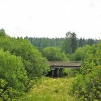 Автомобильный мост через Волчанку