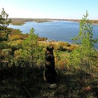Вид на затон Высоковский и реку Ока
