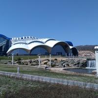 Владивостокский  океанариум