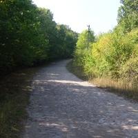 Дорога на Цветное с Ружичево.