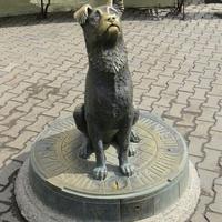 Памятник домашним животным