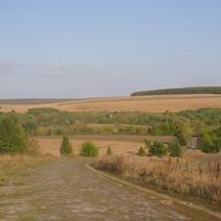 Ружичево, брусчатная дорога с села Цветное