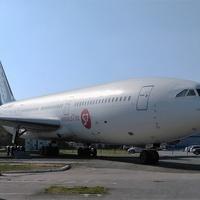 Музей авиации в Толмачёво. ИЛ-86