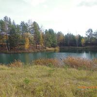 Озеро Солёное погожим октябрьским днём.