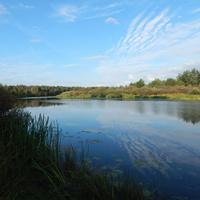 Белогорское озеро (старое русло реки Березины вблизи д.Искра)