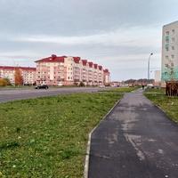 микрорайон Псковский