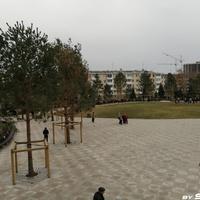 В Парке ангелов