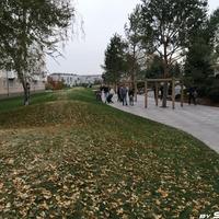 Осень в Парке ангелов