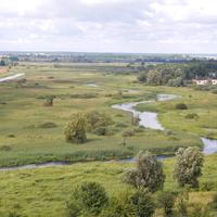 Вид с верха Каменецкой вежы на р.Лесная.