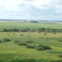 Вид с верха Каменецкой вежы на окружающие поля.