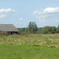 Сельский огород.