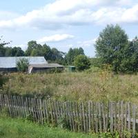 Неухоженный сельский огород.