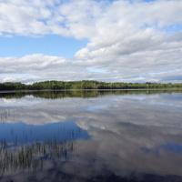 Озеро Опаринское. Мошенской район, Новгородской области. Отражение  неба.