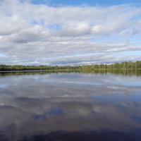 Озеро Опаринское, Мошенской район, Новгородской области.