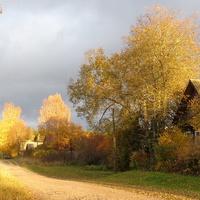 Деревня Ерёмино, Пестовского района, Новгородской области. Осень.