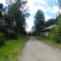 Деревня Ерёмино,Пестовского района, Новгородской области. Бывшие больничные дома.