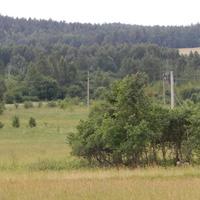Вид на окрестные леса и поля