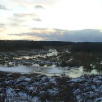 Река Ялма (слева) в месте впадения в неё ручья в 1,5 км к З-Ю-З от д. Пронино