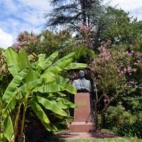 Сухум. Ботанический сад. Памятник Н Лакобо
