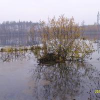 Озеро Смердячье северо-западнее Бакшеево