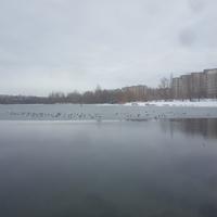 Озеро на реке Осколец.