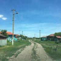 Улица в селе Залесянка