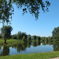 Пруд парка имени А.В.Суворова