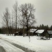 бывшая узкоколейка в посёлке 6-й км