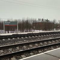 станция Волонга