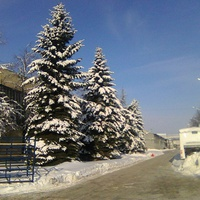 На территории завода ЛиАЗ