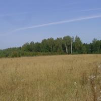 У села Жабки Егорьевского района