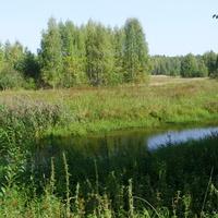 Река Цна у села Жабки Егорьевского района