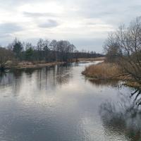 Житин. Река Птичь у моста.