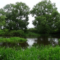 река Улла