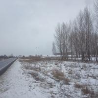 Граница Курской и Белгородской областей.