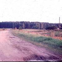 Волково, 1990 г.