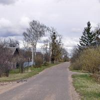 Войнилово. Улица.