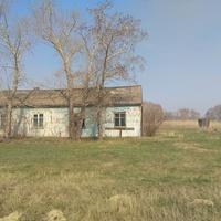 Здесь проживала моя пробабушка Перегоедова Анна Ивановна