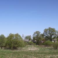 д. Денисово, вид с юга