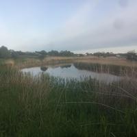 Река Подпольная.