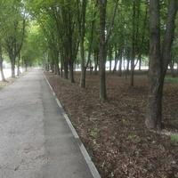 Парк по Центральной улице