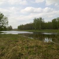 Пруд весной 2011